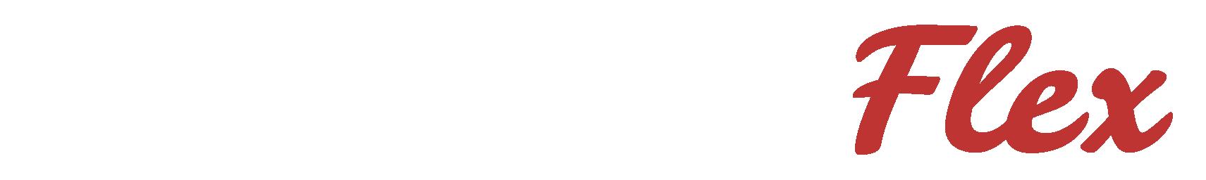 logo alternaflex